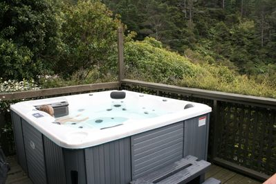 Spa pool surrounded by bush - privacy and bird song