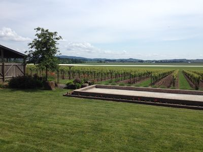 Bocce Court by the vineyard