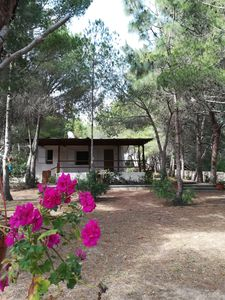 Photo for Villa Buonumore, assured relaxation surrounded by greenery, just a stone's throw from the sea.