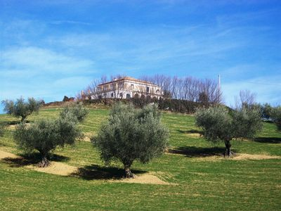 The villa in winter with olive grove