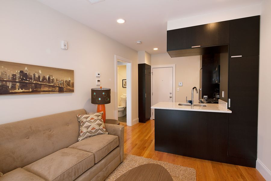 South end boston furnished apartment rental 784 tremont - Boston 1 bedroom apartments for sale ...