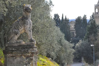 one of the two stone lions in front of the entrance