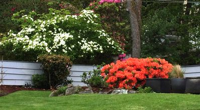 Our Rockland Garden Home