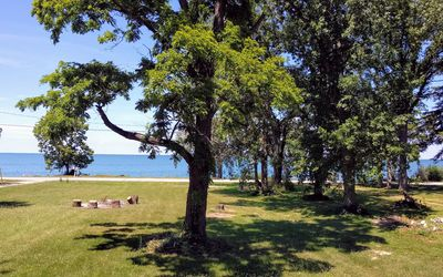 View from the front porch. Wide green lawn with fire pit looking out at lake.