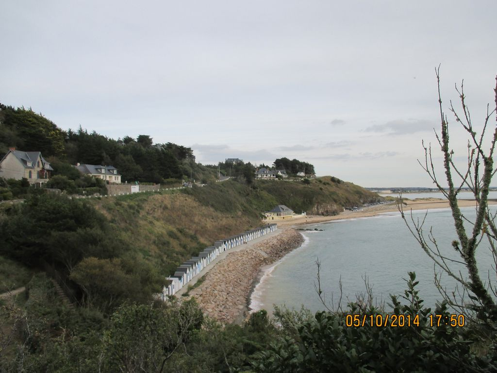 New quiet house with big terrace 100m away from the beach for 100 terrace moss beach ca