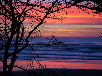 Photo for 2BR House Vacation Rental in Seal Rock, Oregon