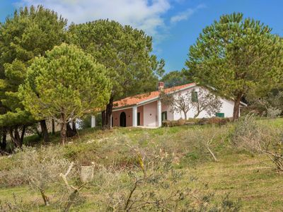 Photo for Country home on 54-acre olive tree farm w/ views & grill - dogs welcome!