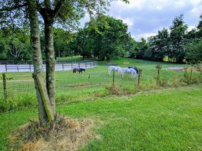 Photo for Private Home on 8 serene acres in Franklin