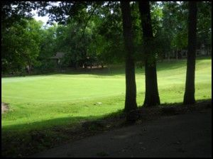 View of green #4 from back patio.