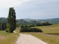 Great place, beautiful setting, great host & great location in Provence.