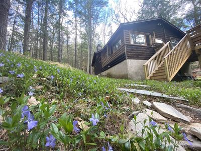 Serene Waterfront Log Cabin on 1 Wooded Acre