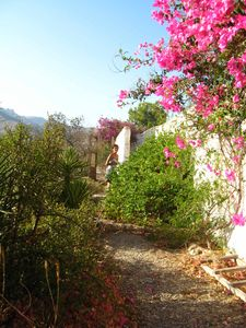 Photo for Farm camping in Nijar in Andalusia