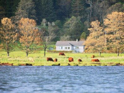 Photo for 3 bedroom accommodation in Ardmaddy Castle, near Oban