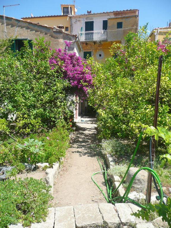 Perfect Summer and Mid Season Retreat on the Beautiful Island of Giglio