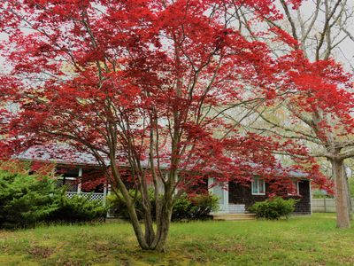 Photo for Charming home in a quiet neighborhood w/ a full kitchen - close to the water!