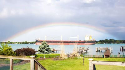 Photo for Ship Watcher's Paradise on the St. Clair River