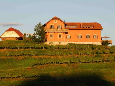 Photo for Hisa Vina - a wine estate on a tranquil vineyard hill sleeps 10+2