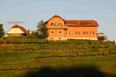 Hisa Vina, Secluded in Private Vineyards