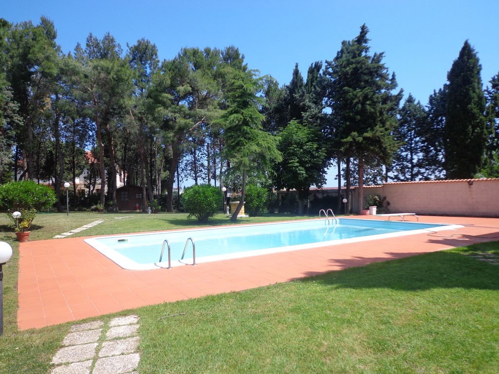 Les vacances parfait entre piscine et pine forest for Piscine forest hill