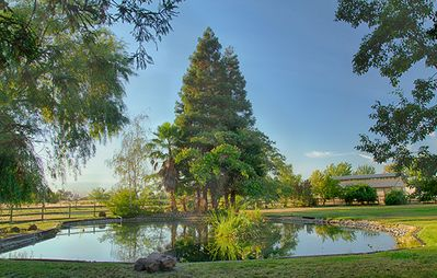 Photo for Sky Ridge Ranch- Six Acres of Peace and Beauty