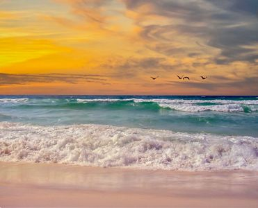 Experience the Relaxing Beauty of Navarre Beach