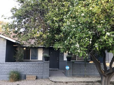 Photo for GREAT LOCATION! Spacious Tempe 4BR Home with Built-in BBQ and Large Pool!