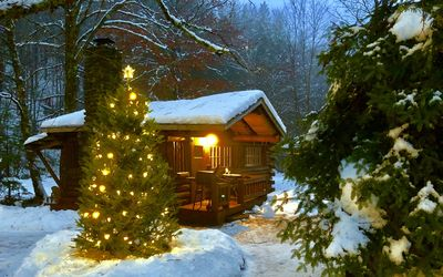 Photo for Rustic Log Cabin #5: Hand hewn, wood burning fireplace, brook, full kitchen/bath