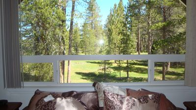 Photo for QUIET NIEGHBORHOOD / MEADOW FOREST VIEW / CLOSE TO MARINA / FROM $175/NIGHT