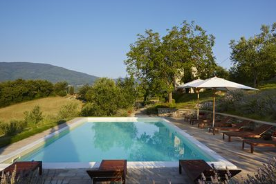 The pool (12m x 6m), sun terrace and house (hidden behind the walnut tree)