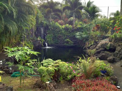Photo for Paradise retreat for two with private pond and waterfall
