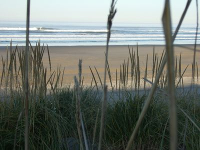 The dunes, seagrass and beach are beautiful & just down our private path.