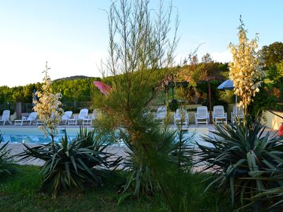 Photo for Delightful apartment in the Umbrian countryside, with large garden and swimming pool