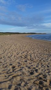 Photo for holiday rentals in the island of Oléron