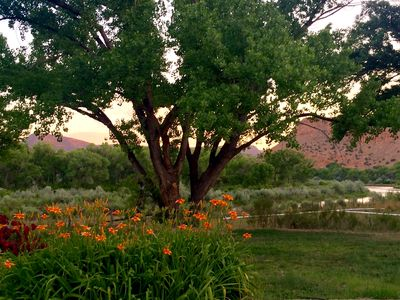 Back yard, river view from the House, summer