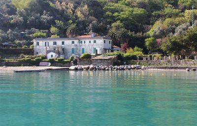 Photo for Appartment OLIVO, on the beach, sea view, garden, wifi, pets welcome, relax