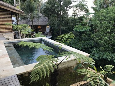 Photo for Mambo Valley, Ubud, Bali