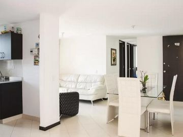 Search 805 holiday rentals