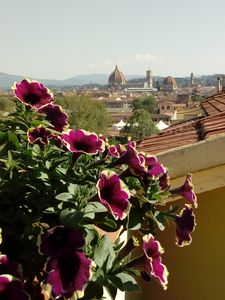 Photo for Tizi's House - Penthouse with a wonderful view of the Duomo near the SMN station