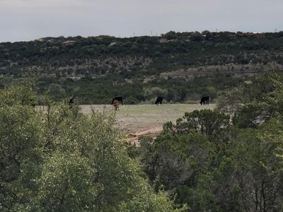 Photo for Unplug and recharge at this beautiful property with stunning hill country views