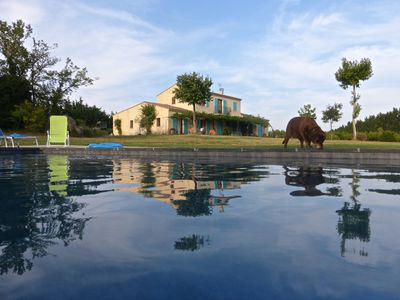 Photo for calm Mas Camargue, spectacular view, swimming pool 15m x 5m