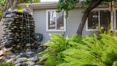Water feature and fern garden in front yard