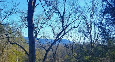 View from private back deck