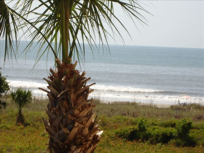 South Forest Beach Condo Al Ocean Views Everywhere You Look From This See
