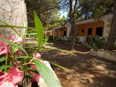 Photo for House for 5 guests with 45m² in Vieste (126757)