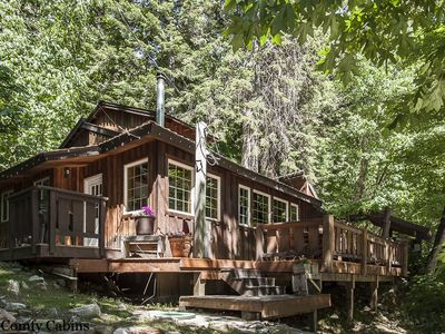 Photo for Your own private tree house w/hot tub, free wifi, propane firepit & Fido OK