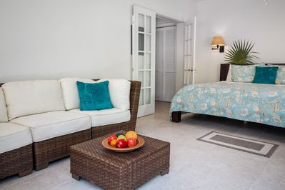Spacious Living area with sofa and King Bed