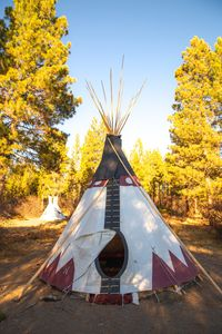 Photo for #3Crescent Moon Native American Tipi
