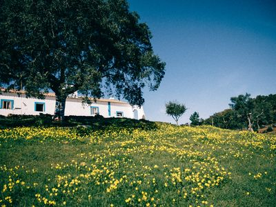 Photo for Monte Aroeira | Country House Alentejo Litoral (3)