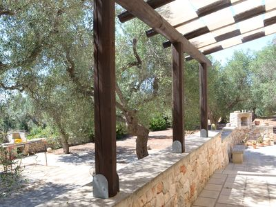 Photo for House surrounded by an olive grove