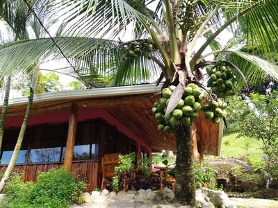 Photo for Arroyo Cottage Forest Home 40min to Manuel Antonio